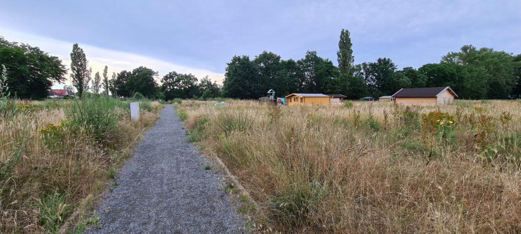 Antrag Kleingartenanlage Hohnhorstsee